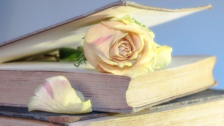 Czy jesteś miłośnikiem książek?